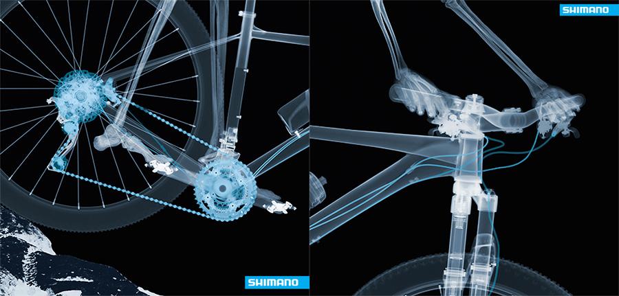 shimano-cykel
